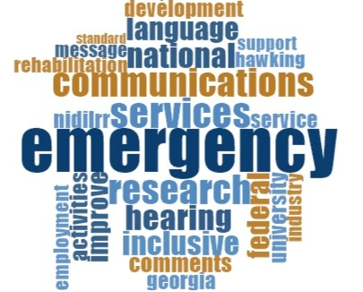 Word cloud that shows the Top 25 words, indicating importance by font size. In descending order they are: Emergency, Services, Research, Communications, Inclusive, Hearing, National, Federal, Language, Improve, Comments, Activities, Development, NIDILRR, Service, University, Georgia, Employment, Hawking, Industry, Rehabilitation, Message, Support, Assistive, Standard